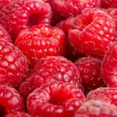 Raspberry Ice Cream 5 ltr